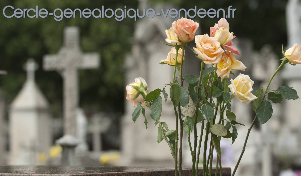 cercle-genealogique-vendeen.fr